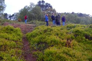Dawn Chorus on Cofton Hill with the healthy bilberry and cleared area WEB keith woolford 7-5-17